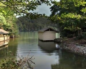Dogwood On The Lake Vacation Rental